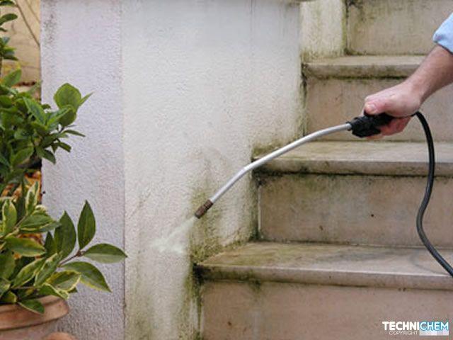 Tr s bon antimousse universel - Anti mousse murs exterieurs ...